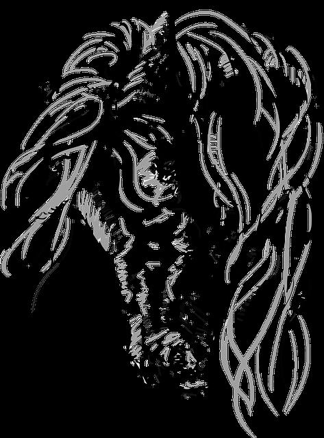 dibujos de caballos 187 caballopedia